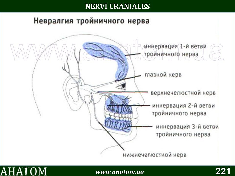Воспаление тройничного нерва после удаления зуба