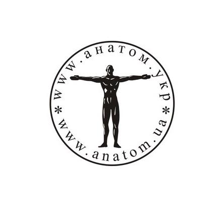 АНАТОМ | ANATOMIST