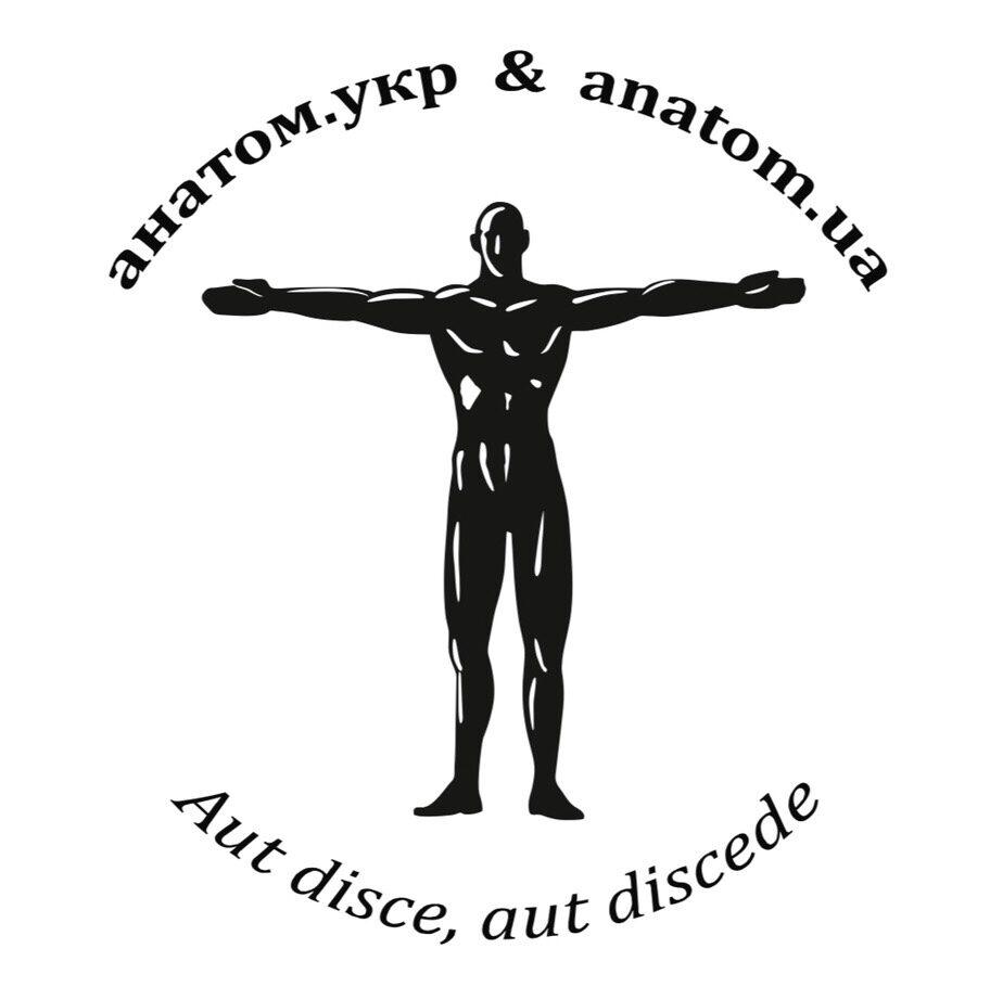 Анатом.укр | The Anatomist